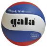 Volejbalový míč Gala BV 5591 S