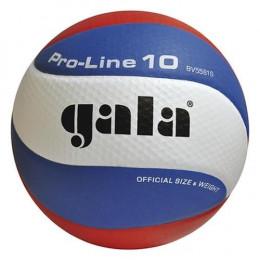 Volejbalový míč Gala Pro-Line BV 5581 S