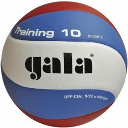 Gala BV5561S Training volejbalový míč
